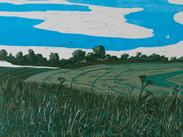 Woodcut print titled 'On the Walk from Pilot Hill' by Peter Driver