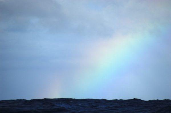Project Ocean - Rainbow