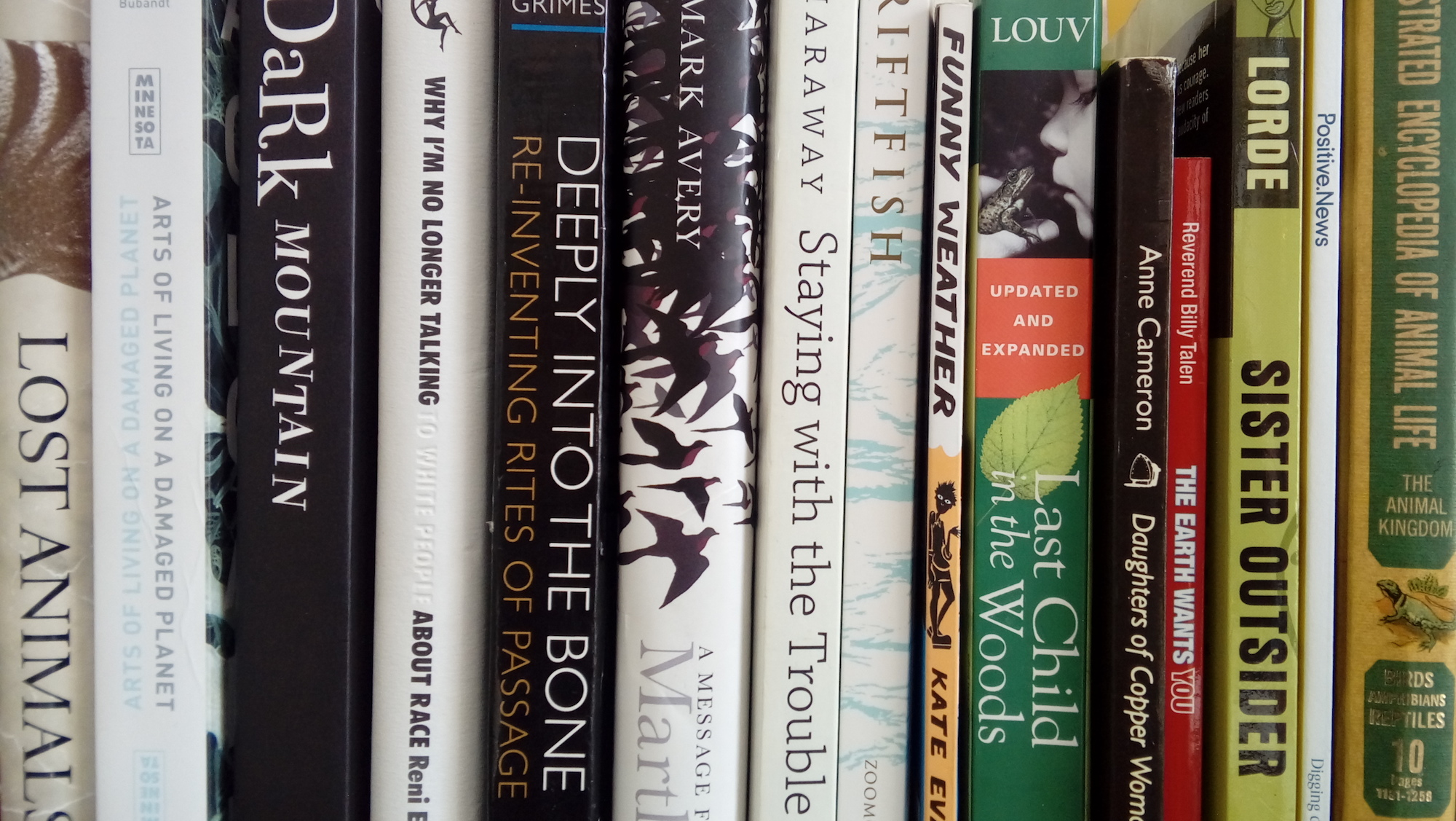 A pile of our favourite books