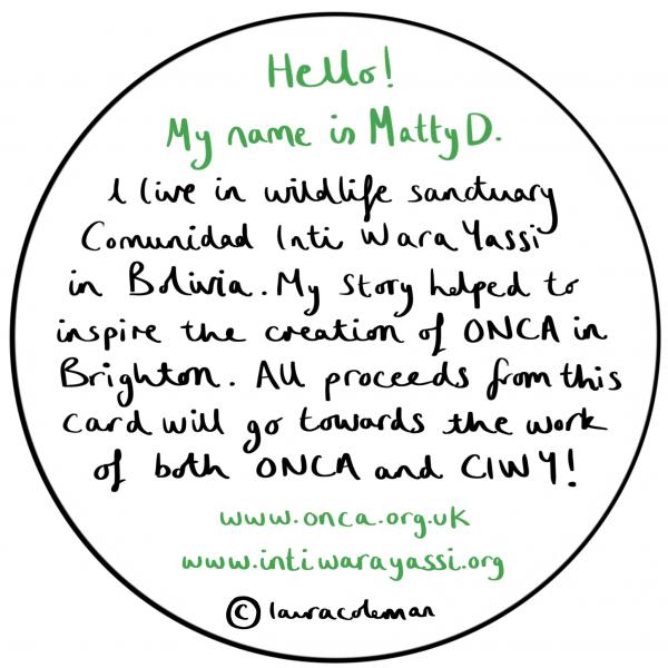 Matty D by Laura Coleman