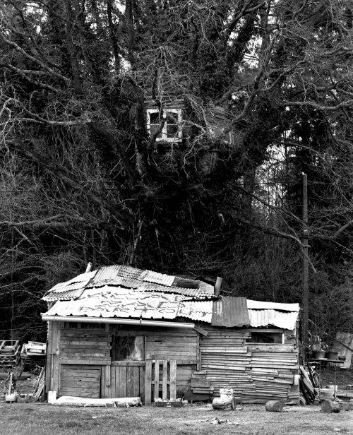 image of self-built cabin at la ZAD