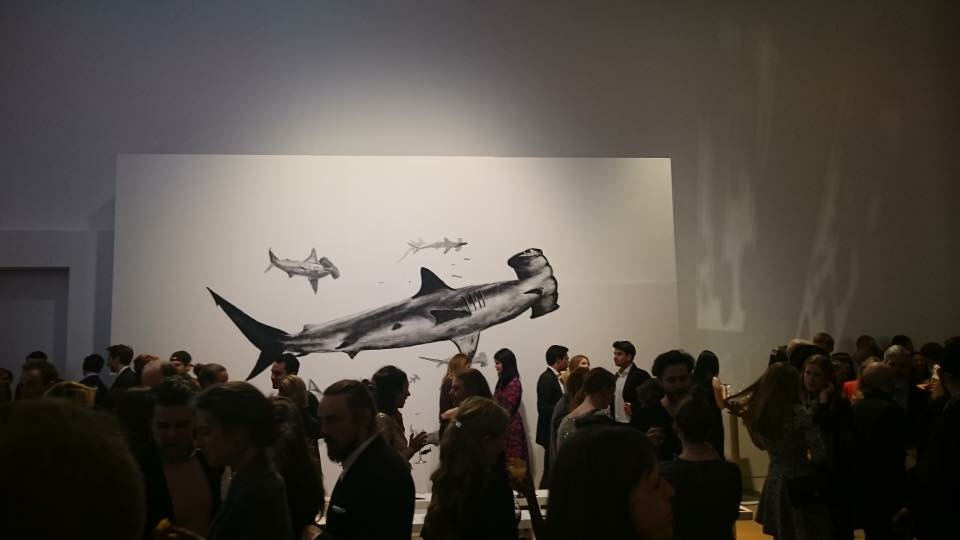 life size drawing of a shark