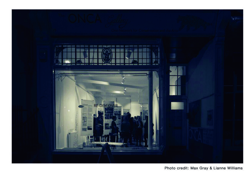 onca gallery window at night