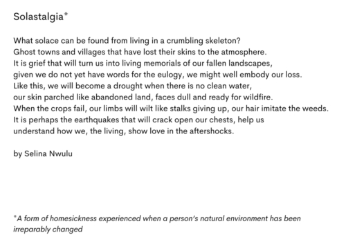 'Solastalgia' by Selina Nwulu