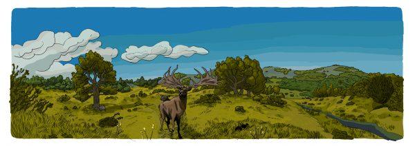 illustration by Daniel Locke