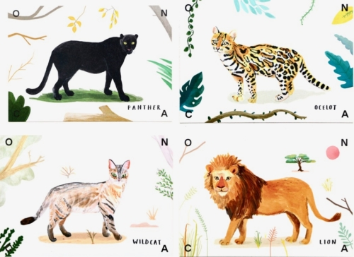 O N C A Postcards